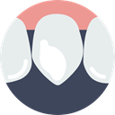 Teeth, Dentist, medical, Canine, mouth, dental Icon