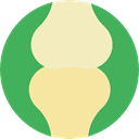 Articulation, Body Parts, joint, Bones, medical, Anatomy MediumSeaGreen icon