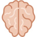 people, medical, Human Brain, Body Part, Brain, Body Organ Wheat icon