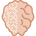 medical, Brain, Body Part, Human Brain, Body Organ, people Wheat icon