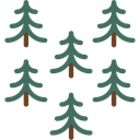 nature, spruce, Tree, Botanical, Pine, pines Black icon