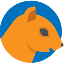 Animals, Animal Kingdom, squirrel, wildlife, mammal, zoo DarkOrange icon