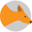 zoo, Animal Kingdom, Marsupial, wildlife, Animals, kangaroo DarkOrange icon