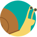 Snail, Animals, Animal Kingdom, wildlife DarkCyan icon