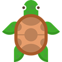 zoo, wildlife, reptile, Animal Kingdom, turtle, Animals Icon
