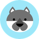Animals, wolf, zoo, Animal Kingdom, wildlife PaleTurquoise icon