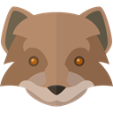 wolf, Animal Kingdom, zoo, Animals, wildlife RosyBrown icon