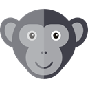 wildlife, Animals, Animal Kingdom, zoo, monkey DarkGray icon