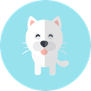 Cat, Animals, Animal Kingdom, pet LightBlue icon