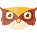 wildlife, Animals, Animal Kingdom, owl, zoo Black icon