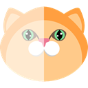 Feline, pet, domestic, Animal Kingdom, Cat, kitty, Animals BlanchedAlmond icon