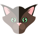 kitty, Animal Kingdom, Cat, pet, domestic, Feline, Animals Black icon