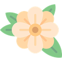 Botanical, petals, nature, blossom, Flower BlanchedAlmond icon