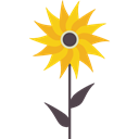 Flower, Botanical, sunflower, petals, nature, blossom Black icon