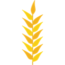 grains, Wheat Plant, Wheat Grain, nature, food, Grain, Wheat Black icon