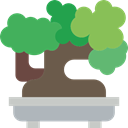 plant, japan, Bonsai, nature, Botanical Silver icon