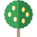 Botanical, ecology, Lemon Tree, nature, Tree SeaGreen icon