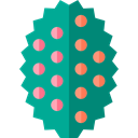 Tree, nature, ecology, holly, Botanical Teal icon