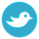 bird LightSeaGreen icon