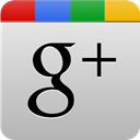 grey, Googleplus Silver icon