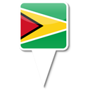 Guyana Black icon