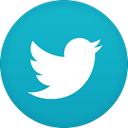 twitter LightSeaGreen icon