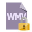 File, Wmv, Lock, Format LightSlateGray icon