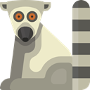 Animal, Lemur, zoo, Wild Life, Animal Kingdom, Animals Silver icon