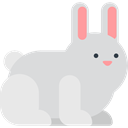 Bunny, mammal, Animal Kingdom, zoo, Animals, Wild Life, rabbit Gainsboro icon