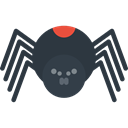 insect, Animal Kingdom, Arachnid, spider, Animals DarkSlateGray icon