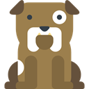 pet, Animal Kingdom, dog, Bulldog, mammal, Animals Peru icon