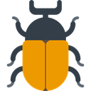 insect, beetle, Animal Kingdom, bug, Animals Orange icon