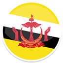 Brunei Gold icon