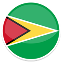 Guyana MediumSeaGreen icon