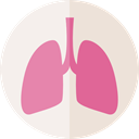 Breath, Lungs, medical, organ, Healthcare And Medical, Lung, Anatomy PaleVioletRed icon