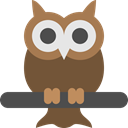 owl, Big, vision, bird, Eyes, night, wild DarkOliveGreen icon