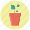 Flower, eco, pot, plant, grow, seed, leaves PaleGoldenrod icon