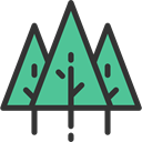 yard, Pine, Forest, nature, Tree, garden, Botanical, Ecology And Environment MediumAquamarine icon