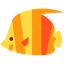 Aquarium, Animals, Sea Life, Aquatic, fish DarkOrange icon