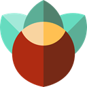 nut, organic, natural, seed, Seeds, Nuts, Hazelnuts, food, Hazelnut, nature, Food And Restaurant SaddleBrown icon
