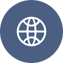 Connection, internet, web, globe, website, worldwide DarkSlateBlue icon