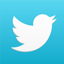 bird, media, Social, tweet, social network, twitter MediumTurquoise icon