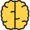 Brain, Anterior Part, Body Organ, Brain Anterior, Healthcare And Medical, medical, Human Brain, Body Part, people SandyBrown icon