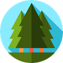 Forest, Pine, yard, Botanical, Tree, garden, nature DarkOliveGreen icon