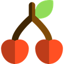 food, diet, cherries, Cherry, vegan, Food And Restaurant, vegetarian, Fruit, organic, Healthy Food Black icon