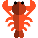 food, Sea Life, lobster, Food And Restaurant, Animal, Animals OrangeRed icon