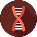Dna Structure, medical, Biology, science, Genetical, Healthcare And Medical, education, Deoxyribonucleic Acid, dna SaddleBrown icon