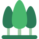 Pine, yard, garden, Forest, Botanical, trees, nature SeaGreen icon