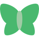 insect, Moths, Animals, butterfly MediumSeaGreen icon