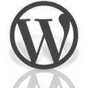 Mirror, Alt, Wordpress DarkSlateGray icon